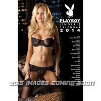 Playboy Lingerie 2015 11X17 Wall Calendar  9781469317656
